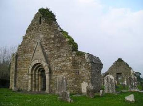 Uí Bairrche (Leinster) - Page 1 - TraceyClann